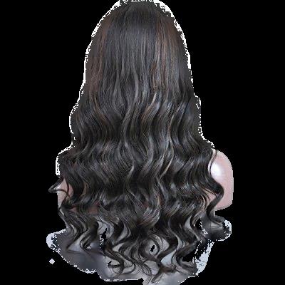 Aja Natural Curly Wig Back